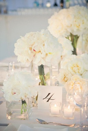 White Wedding Peonies